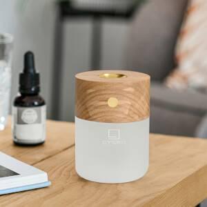 Gingko Smart Diffuser Lamp - Ash