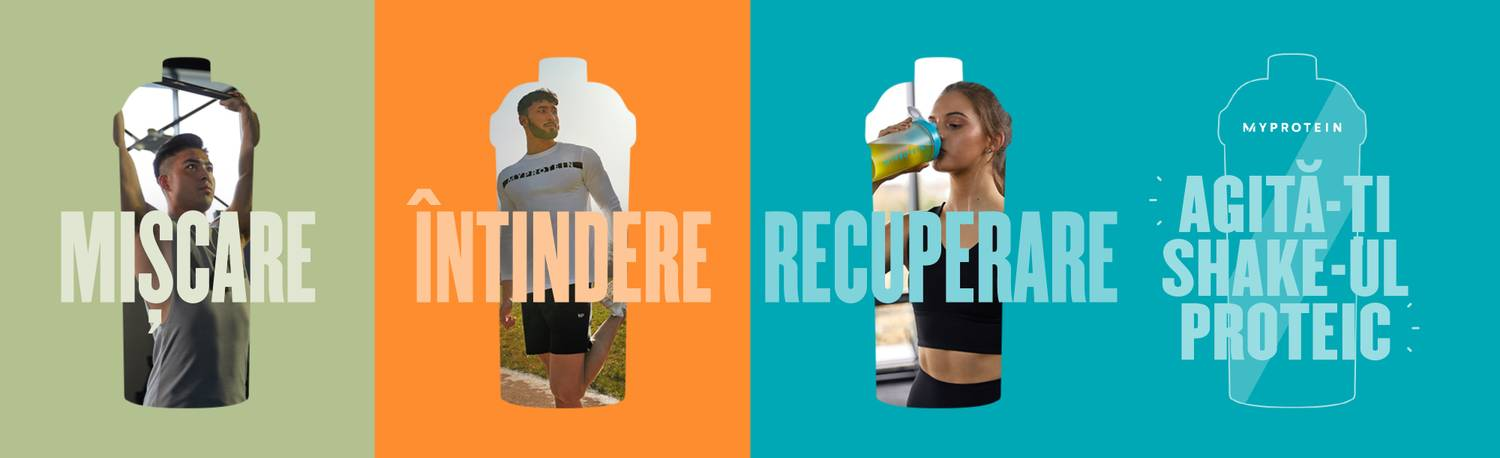 Protein Powder For Beginners