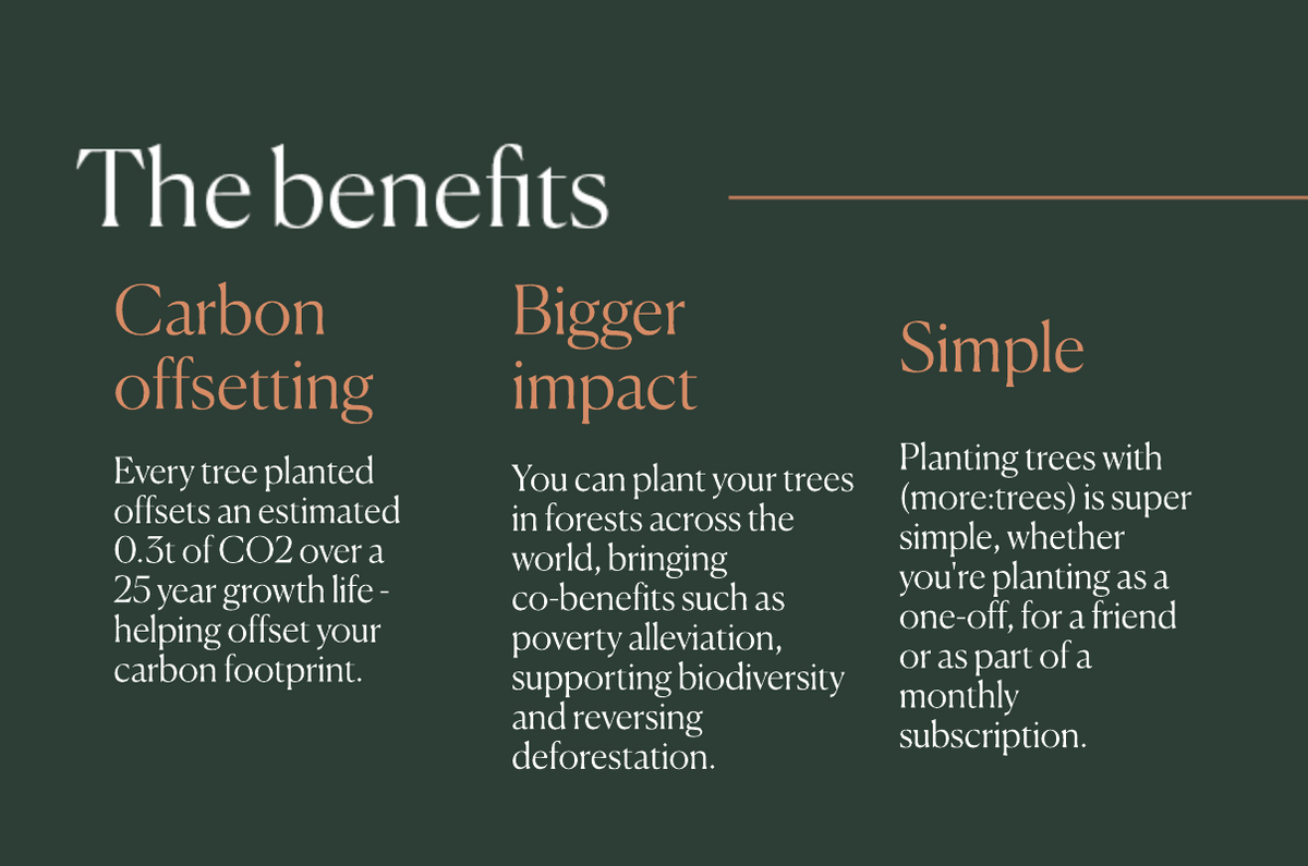 Introducing (more:trees) THG - benefits