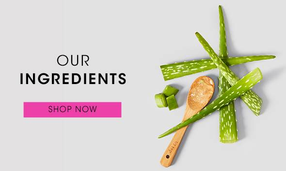 Our Ingredients, Shop Now.