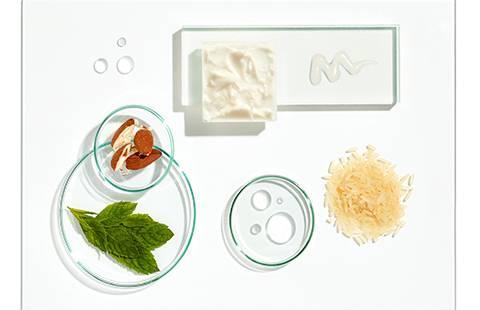 Ingredientes cuidado del cabello