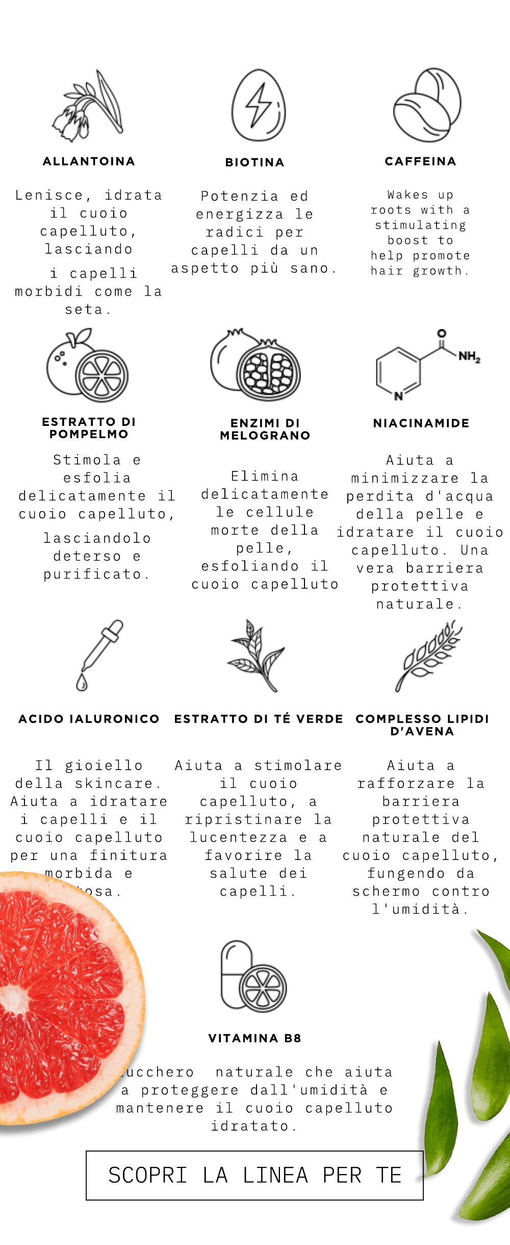 Ingredienti Naturali: Allatoina, Biotina, Caffeina, Estratto Di Pompelmo, Estratto di Tè Verde, Acido Ialuronico, Niacinamide, Complesso Lipidi D'Avena, Enzimi di Melograno, Vitamina B8