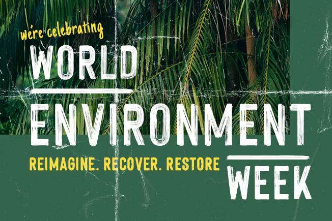 World Environment Week