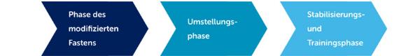Phase des modifizierten Fastens, Umstellungs-phase, Stabilisierungs-und Trainingsphase