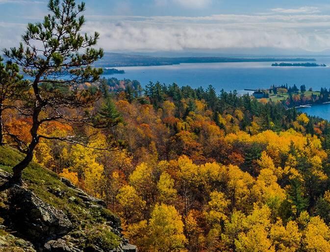 Maine Waldgebiet