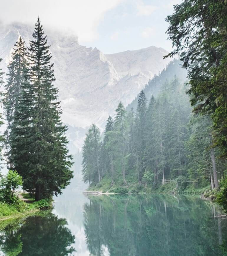 A river flowing through the valley floor in the middle of a wood and surrounded by mountains