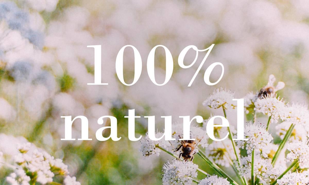 Tout ce dont nous dépendons pour survivre provient de la nature