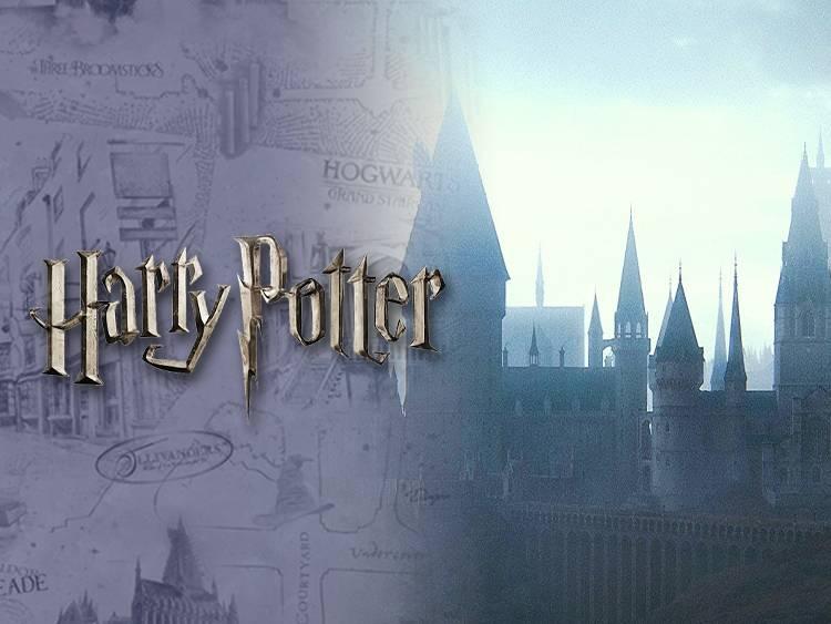 Harry Potter chez VeryNeko