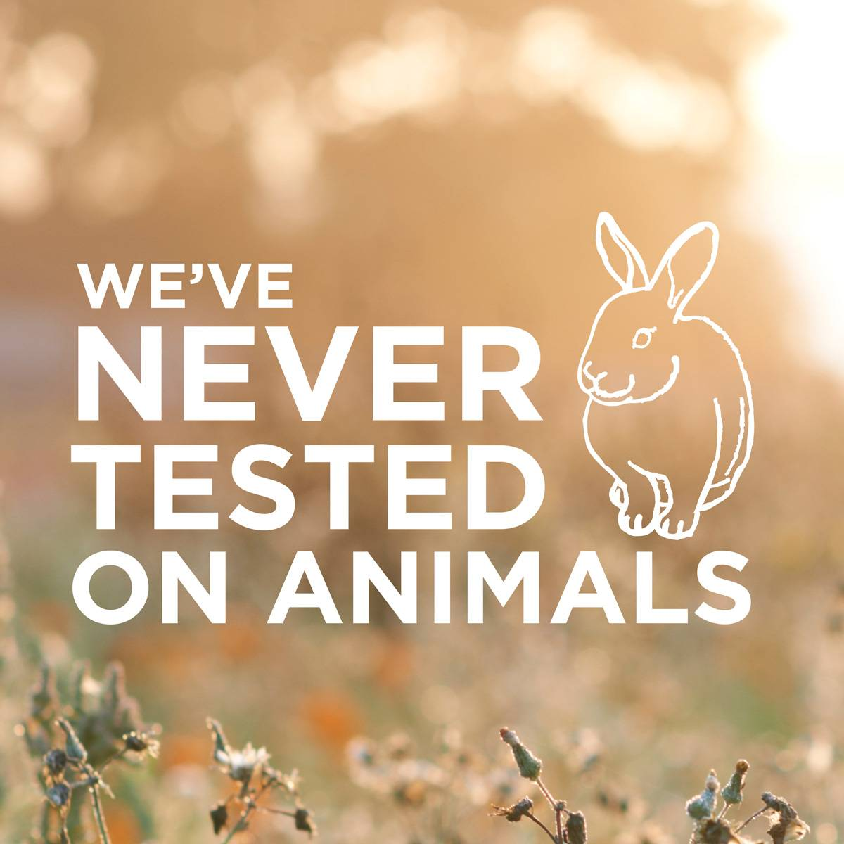 We have never tested on animals