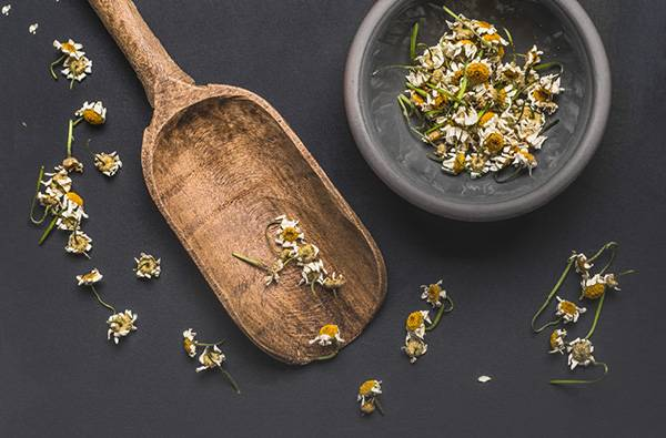 Herb of the Month- Chamomile
