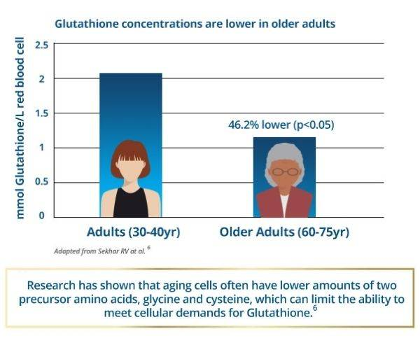 Research has shown that aging cells often have lower amounts of two precursor amino acids, glycine and cysteine, which can limit the ability to meet cellular demands for Glutathione.