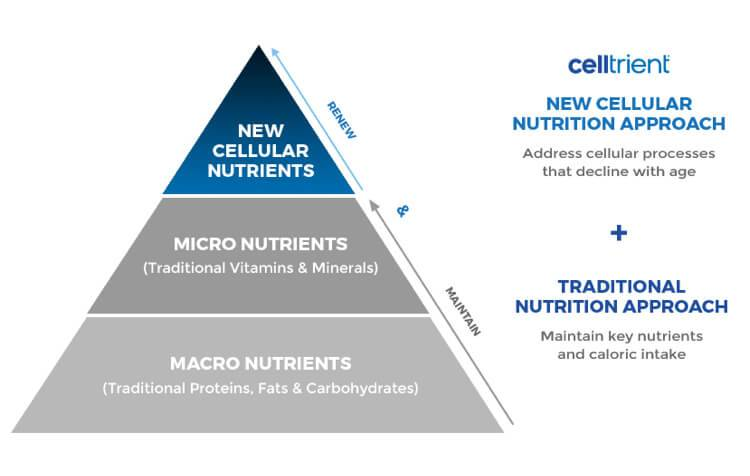 Pyramid displaying the difference between the traditional cellular nutrition approach compared to the Celltrient approach