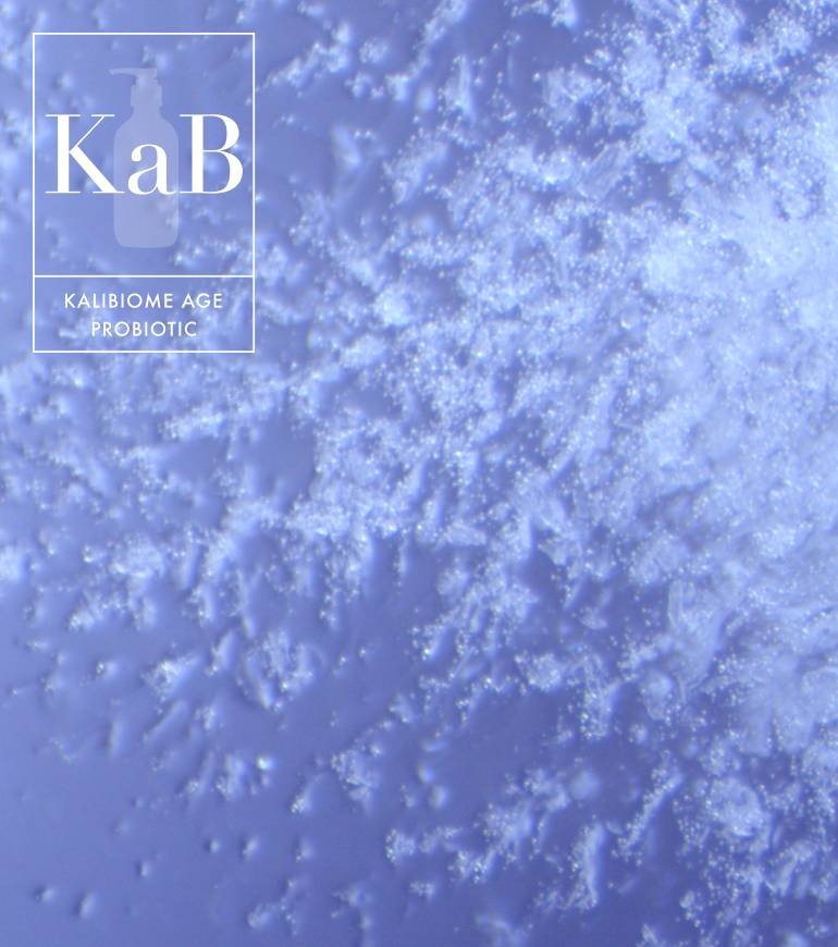 Kalibiome AGE Probiotic is a high-performance, non-live bacteria scientifically shown to help improve the extracellular matrix, reduce roughness, and increase hydration.