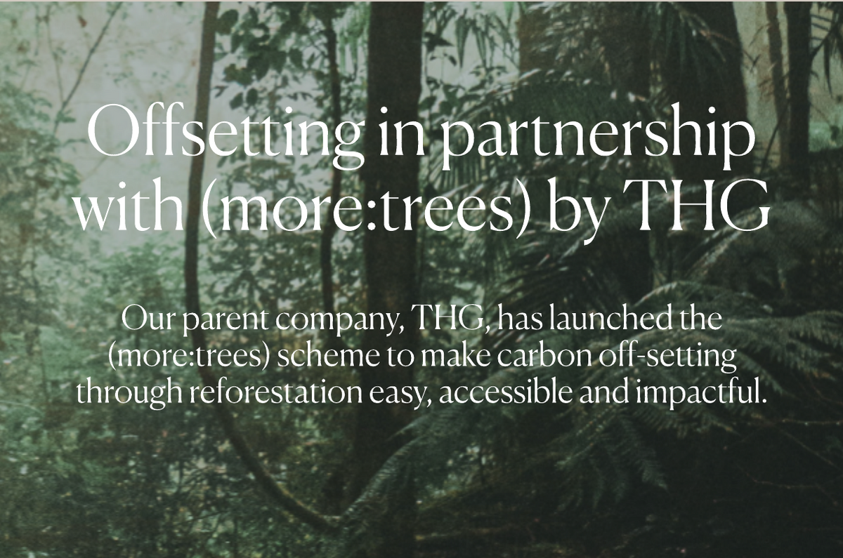 Offsetting in partnership with more:trees by THG