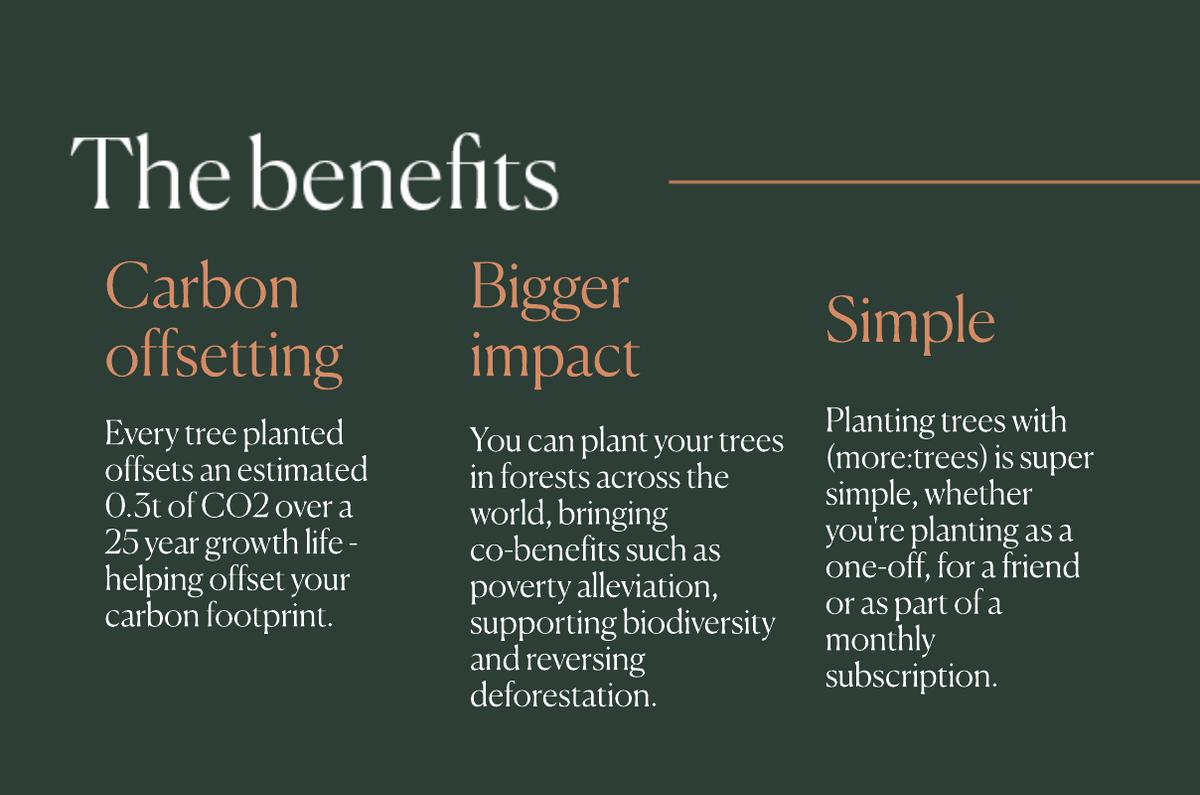 More Trees THG Eco (benefits)