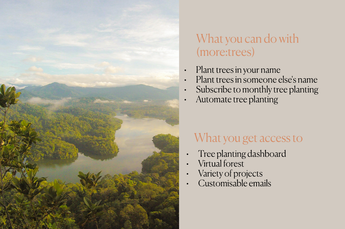 What you can do with More Trees: Plant trees in yours and a friend's name. Subscribe and automate tree planting.