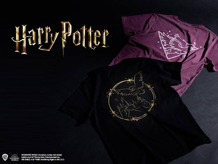 HARRY POTTER MINI RANGE
