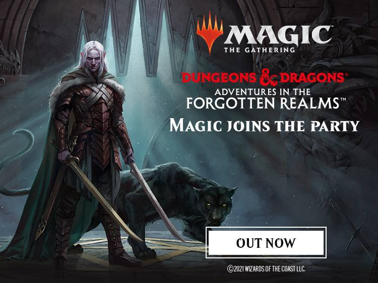 DND & MTG COLLECTION BANNERS