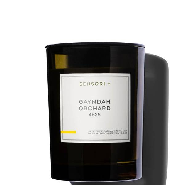 SENSORI+ Air Detoxifying Aromatic Gayndah Orchard Soy Candle 260g