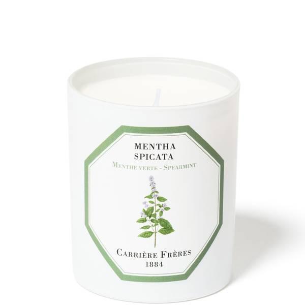 Carrière Frères Scented Candle Spearmint - Mentha Spicata - 185 g