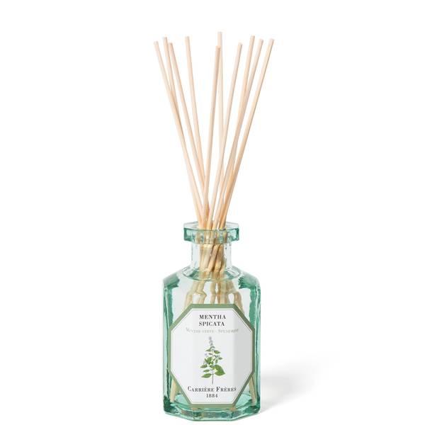 Carrière Frères Diffuser Spearmint - Mentha Spicata - 200 ml