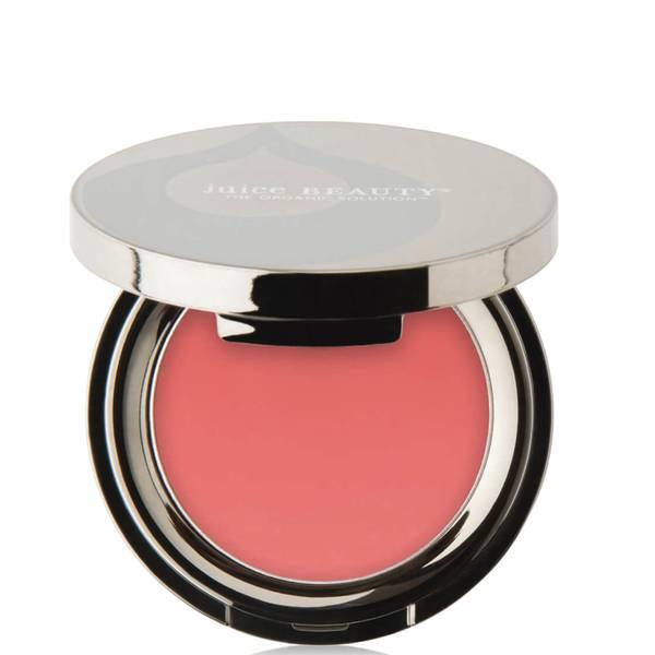 Juice Beauty PHYTO-PIGMENTS Last Looks Blush (0.11 oz.)