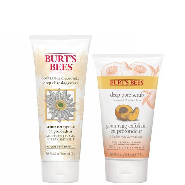 Burt's Bees Clean Skin Duo