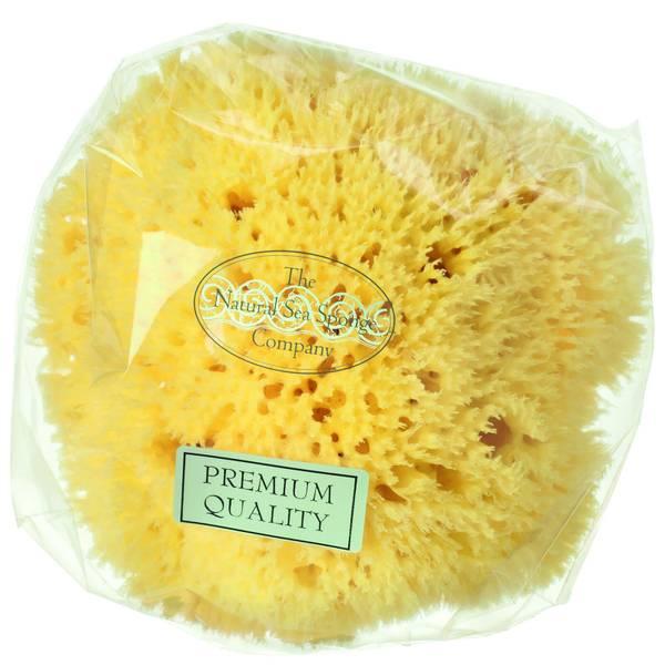 Hydrea London Honeycomb Sea Sponge, storlek 10–11,5cm