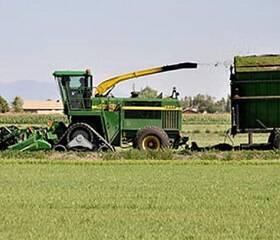 tracteur agricole dans un champ