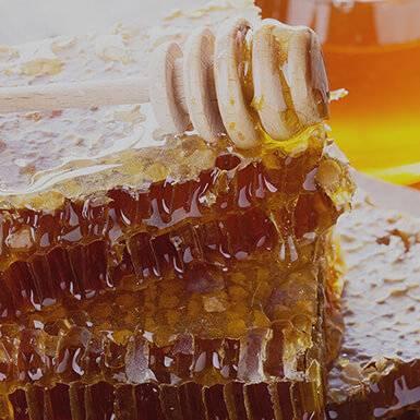 Über Honig
