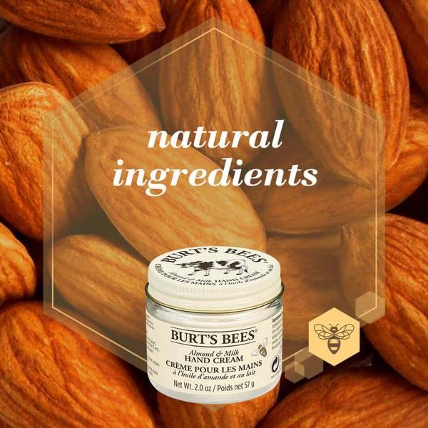 An image of Burt's Bees Almond & Milk Hand cream on top of almonds