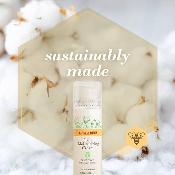An image of Burt's Bees Sensitive Skin Daily Moisturising Cream on top of cotton buds