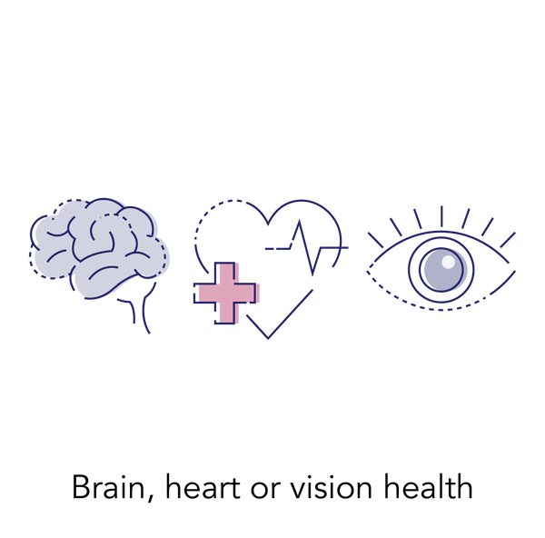 Brain, heart and vision