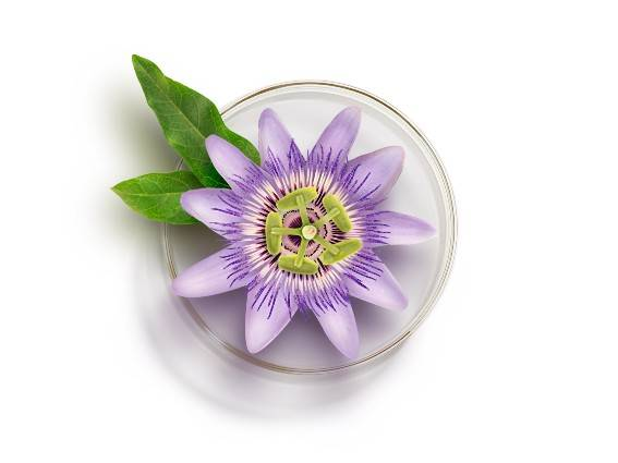 Passionflower. The creeper with beneficial anti-wrinkle properties. Find out more.