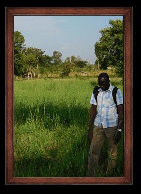 Organic palmarosa ORIGIN: UGANDA