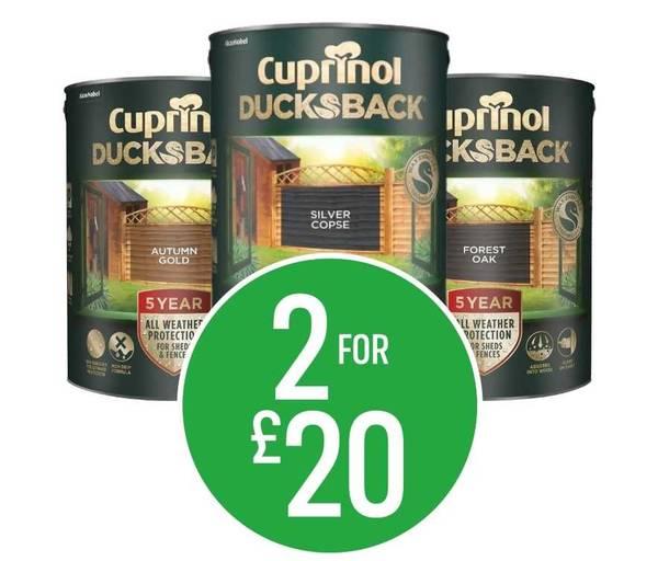 Get 2 for £20 5L on Cuprinol Ducksback