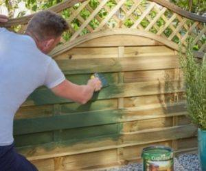 Painting projects to transform your garden