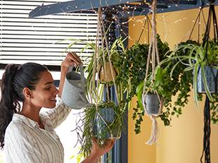 How to create a hanging bathroom garden