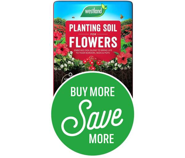 Buy More Save More - 2 for £12.95 or 5 for £20 on Bio Life Planting Soil For  Flowers 40L