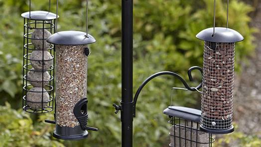 Bird Feeding Stations