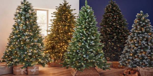 4 Christmas trees with lights on them