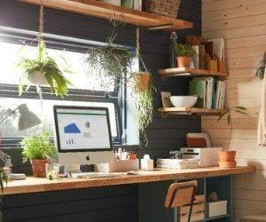How to transform your shed