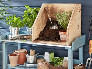 How to create and grow a herb garden