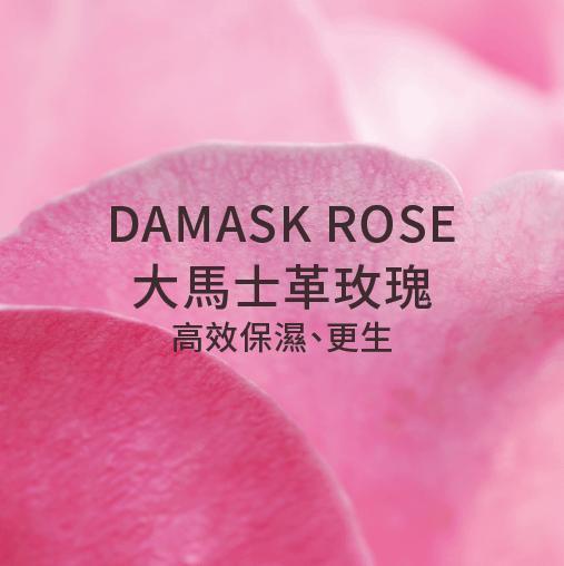damask rose 大馬士革玫瑰 高效保濕 更生