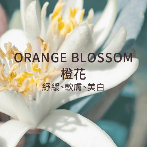 orange blossom 橙花 舒緩 軟膚 美白