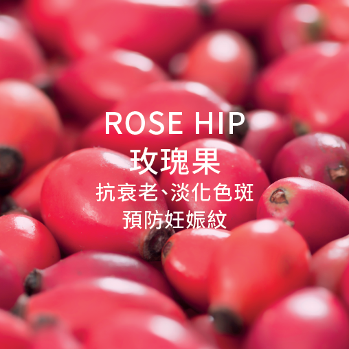 Rose hip 玫瑰果 抗衰老 淡化色斑 預防妊娠紋