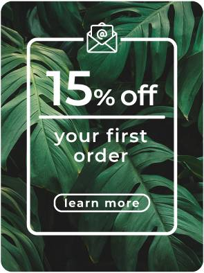 15% off your first order