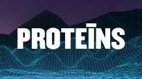 Proteīns