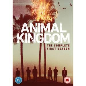 Animal Kingdom - Season 1