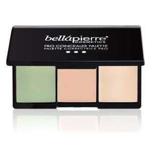 Bellápierre Cosmetics Conceal and Correct Palette